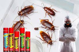 дихлофос от тараканов