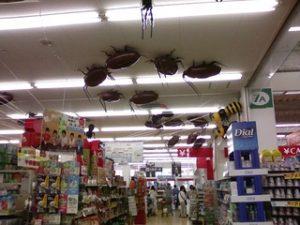 тараканы в магазине